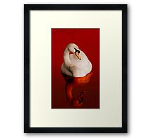 Blood Swan Framed Print