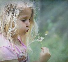 My Little Fairy by Chrisdor