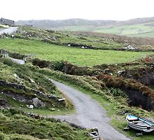 Dursey Island, County Cork, Ireland by DanM5150