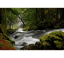 Panther Creek Falls Landscape Photographic Print