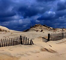 Winter Dunes by Hope Ledebur