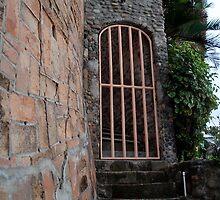 Hidden Gate  by richard  webb
