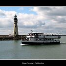 Buffalo Main Lighthouse &amp; Miss Buffalo Tour Boat by Rose Santuci-Sofranko