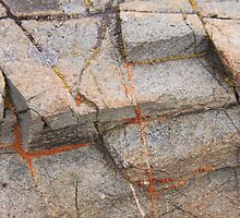 Geometry And Art In Rock And Orange Lichen by coffeebean