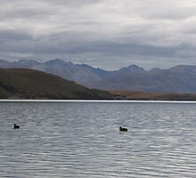 Lake Tekapo On A Cloudy Day by coffeebean