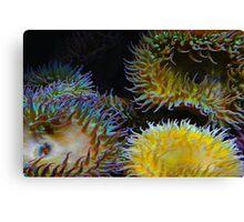 Underwater Garden Canvas Print