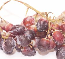 Red grapes on white by rajeshbac