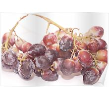 Red grapes on white Poster