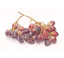 red grapes on white Photographic Print