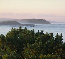 Yamba Sea Scenery by Virginia McGowan