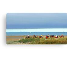 Hervey Bay Camel Caravan  Canvas Print