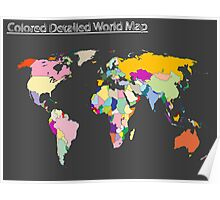 Colored detailed world map Poster