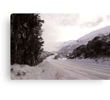 Arthurs Pass NZ Canvas Print
