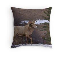 Ram strut Throw Pillow