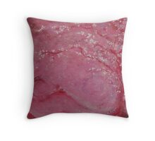 Sunrise Winter Blossoms  Throw Pillow