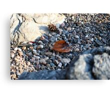 Rocky Leaves Canvas Print