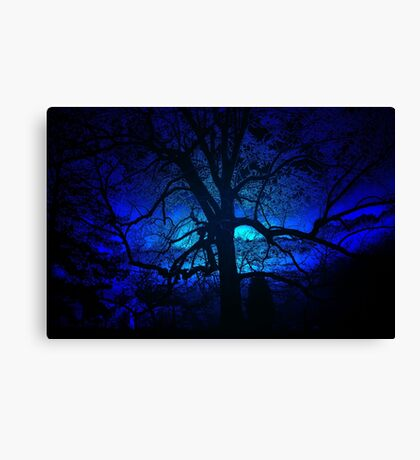 ~blue moon~ Canvas Print