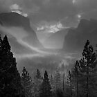 Yosemite Valley at dawn, USA. by Justin Foulkes