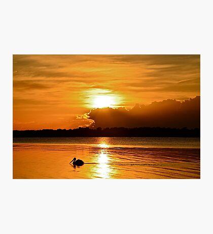 Golden Morning.  15-4-11. Photographic Print