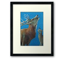 The call of the wild Framed Print