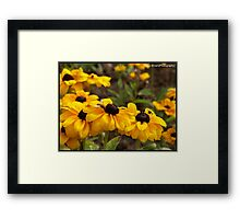 Bright Flowers attracting the wasps Framed Print