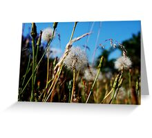 Blowing in the wind... Greeting Card