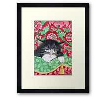 A comfy cat Framed Print