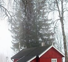 Norwegian Houses Series #4 by missmoneypenny