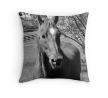 Horse in B&W Throw Pillow