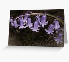 Blue bell Greeting Card
