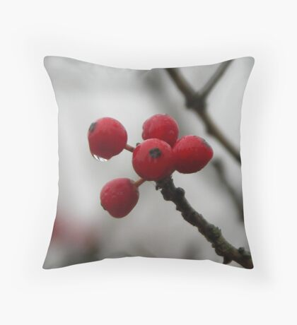 Winter's Red Throw Pillow