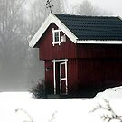 Norwegian Houses Series #5 by missmoneypenny