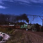 """Flying Scotsman"" & 3801 @ Springwood, Australia by muz2142"