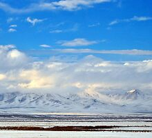 Snowy in Nevada by Donna Anglin Husband