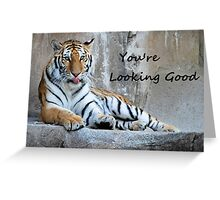 "Greeting Card Tiger ""You're Looking Good"" Greeting Card"