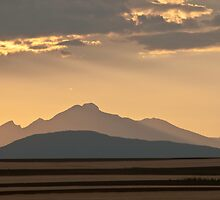 Gold In The Hills by Gregory J Summers