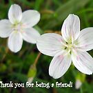 Thank You For Being a Friend by debbiedoda