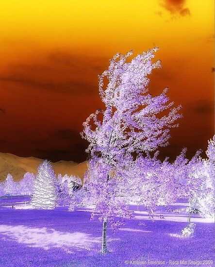 Winter Sunset by rocamiadesign