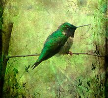 Watchful by Brenda Burnett