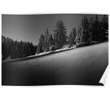 The Snow Sparkles beneath the Trees Poster
