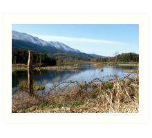 Cheam Wetlands 1 Art Print