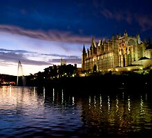 Palma Cathedral by night by Unidentifiable