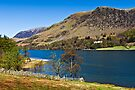 Hassness Buttermere, Cumbria. UK by David Lewins