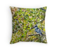 Kingfisher on the Shire Rive Throw Pillow