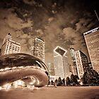 Chicago Skyline by night by danwa