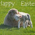 a small step for a lamb: Easter card by Stephen Frost
