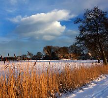Winter snow fields, Brindle, Lancashire by McBay