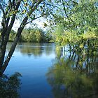 Flooded Waters - Wisconsin River by mjparsons