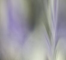 Glass Abstract #6 Lavender Dreams by Su Walker