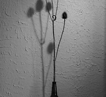 Spiky by Dirk Michael Dudat